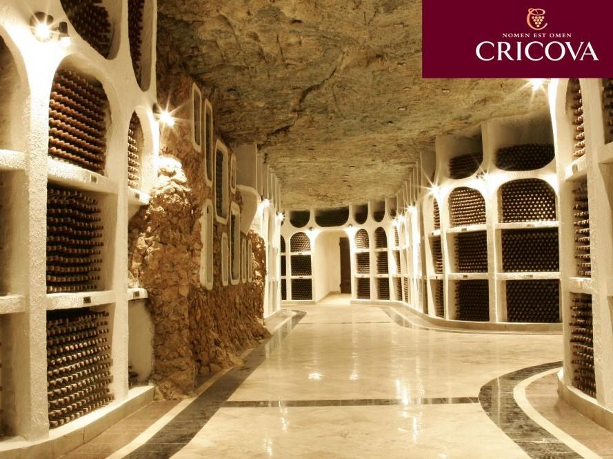 Cricova Wine Collection