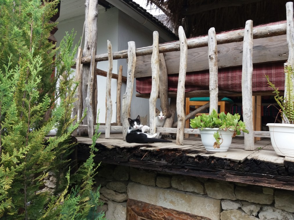 life in the village Butuceni