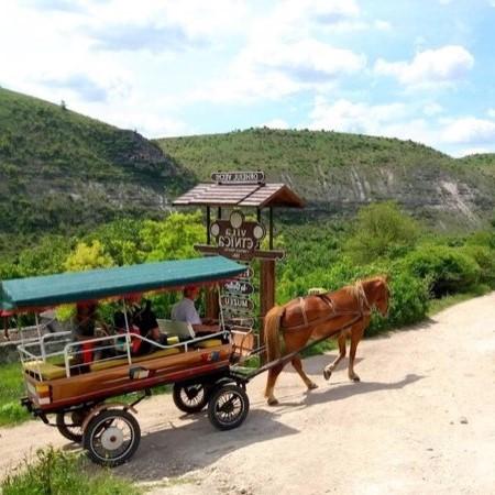 Orheiul Vechi - Local Taxi :)